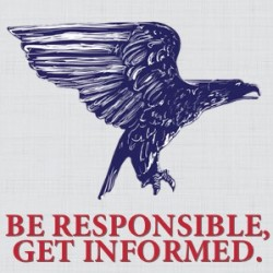 Michigan progressive voters: Be responsible and get informed