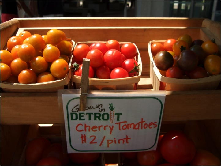 Keep Growing Detroit cultivates more than fresh produce