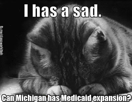 Michigan Senate Republicans fail to act on Medicaid expansion