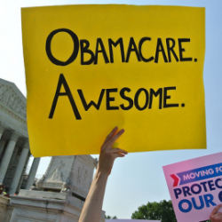 What exactly has Obamacare done for Americans anyway?