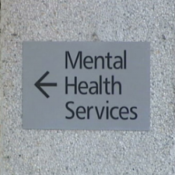 Gov. Snyder moves to privatize mental health services in latest budget proposal