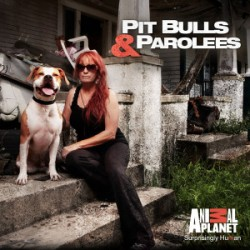 "BREAKING: Detroit dog rescue group featured on Eclectablog to partner with Villalobos of ""Pit Bulls and Parolees"""