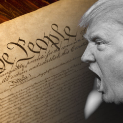 Help the Michigan Democratic Party send U.S. Constitutions to Donald Trump
