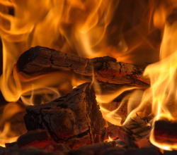 "Republicans set to pass law defining the burning of wood for energy as ""carbon neutral"""