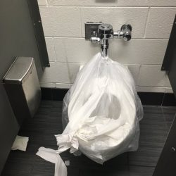 An out of service toilet in a Detroit school.