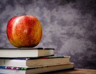 """Teachers and the """"social contract"""": A parable"""