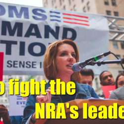 EPISODE 73 – How to fight the NRA's leadership – with Shannon Watts from Mom's Demand Action