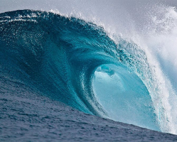 The Democratic Blue Wave, brought to you by activists like YOU!