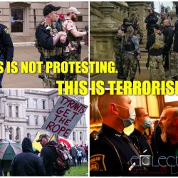 This week's rally at the Michigan Capitol Building wasn't protesting. It was terrorism.