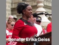 Trying to cling to the last shreds of power – with Michigan State Senator Erika Geiss